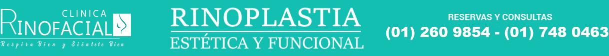 nuevo logo large